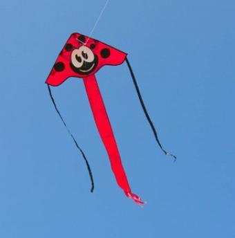 cerfs volants monofil boutique de cerfs volants ailes. Black Bedroom Furniture Sets. Home Design Ideas